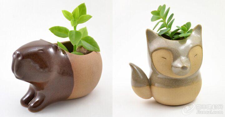 陶瓷花盆。她的店名为Cumbuca Chic,她将可爱的动物,如水豚,食蚁兽和狐狸等形象制作成了功能性的物品。它们足够小,可以拿在手中,它们适合种植肉质植物和仙人掌。植物可以从动物的背上或头上长出来。食蚁兽花盆也可以作为一个喷壶。它的长鼻子被制成了一个槽。 Ramos用双手制作了她所有的手工作品。她将光泽釉涂到了动物的身体上,同时也可以让磨砂陶瓷粘土发光。这带给她中性色彩的作品一种自然和乡村的外观,让色彩鲜艳的绿色肉质植物脱颖而出。