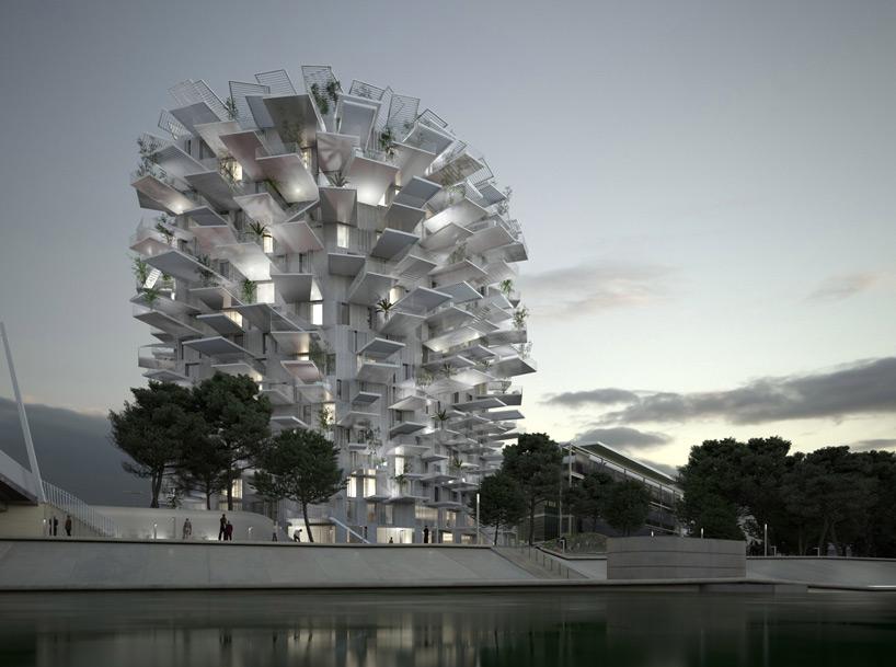 白树仿生出宅 人造的建筑之树