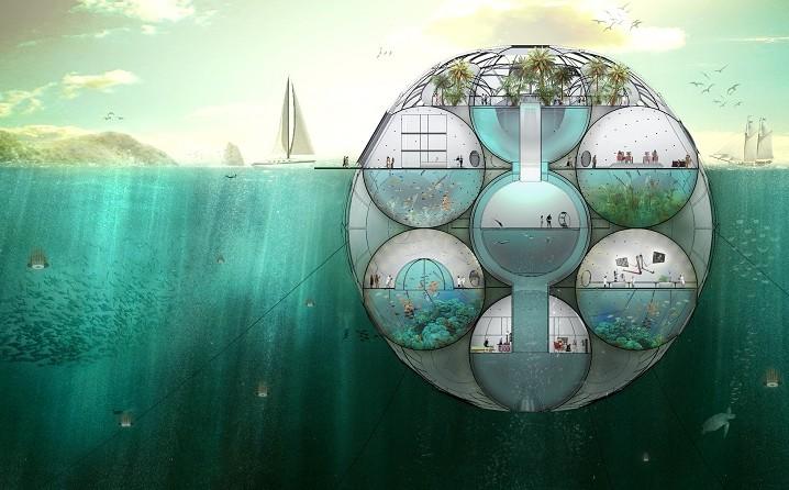 浮动农场:浮游植物吸收二氧化碳和监视环境