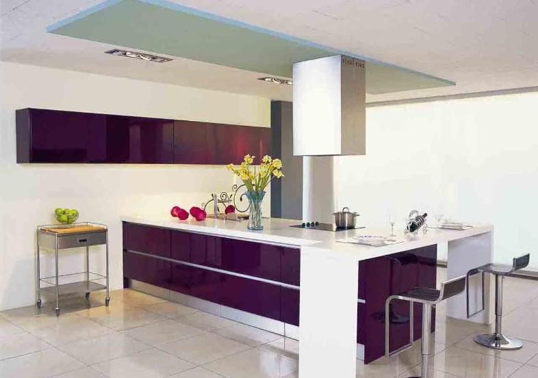整体厨柜的特点是将操作台与厨房电器